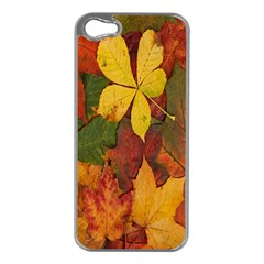 Colorful Autumn Leaves Leaf Background Apple Iphone 5 Case (silver)