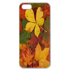 Colorful Autumn Leaves Leaf Background Apple Seamless Iphone 5 Case (clear)