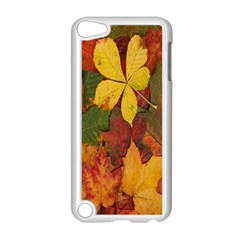 Colorful Autumn Leaves Leaf Background Apple Ipod Touch 5 Case (white)