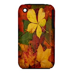 Colorful Autumn Leaves Leaf Background Iphone 3s/3gs