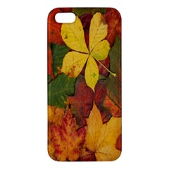 Colorful Autumn Leaves Leaf Background Apple Iphone 5 Premium Hardshell Case