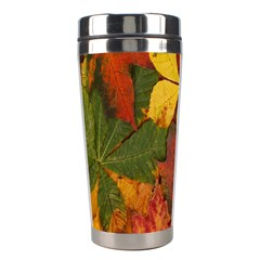 Colorful Autumn Leaves Leaf Background Stainless Steel Travel Tumblers