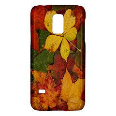 Colorful Autumn Leaves Leaf Background Galaxy S5 Mini