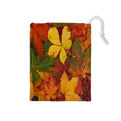 Colorful Autumn Leaves Leaf Background Drawstring Pouches (medium)
