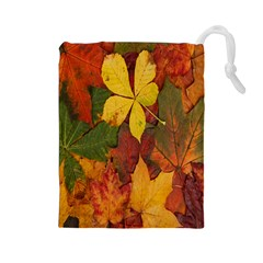 Colorful Autumn Leaves Leaf Background Drawstring Pouches (large)