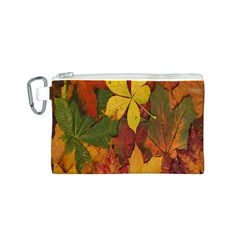 Colorful Autumn Leaves Leaf Background Canvas Cosmetic Bag (s)