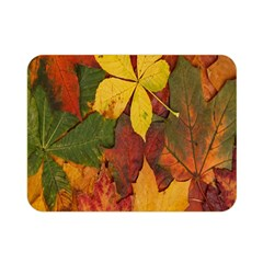 Colorful Autumn Leaves Leaf Background Double Sided Flano Blanket (mini)