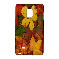 Colorful Autumn Leaves Leaf Background Galaxy Note Edge