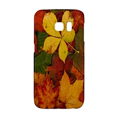 Colorful Autumn Leaves Leaf Background Galaxy S6 Edge