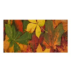 Colorful Autumn Leaves Leaf Background Satin Shawl