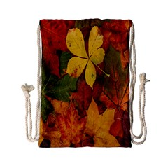 Colorful Autumn Leaves Leaf Background Drawstring Bag (Small)