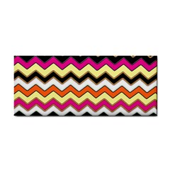 Colorful Chevron Pattern Stripes Cosmetic Storage Cases