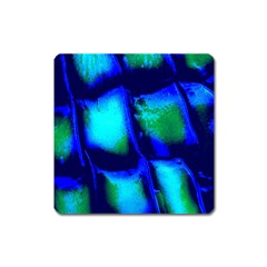 Blue Scales Pattern Background Square Magnet