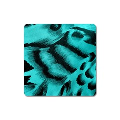 Blue Background Fabric Tiger  Animal Motifs Square Magnet