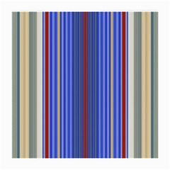 Colorful Stripes Background Medium Glasses Cloth (2-Side)
