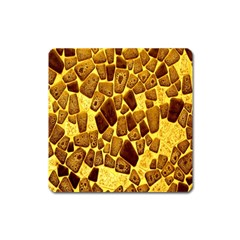 Yellow Cast Background Square Magnet