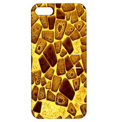 Yellow Cast Background Apple iPhone 5 Hardshell Case with Stand