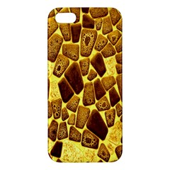 Yellow Cast Background Apple Iphone 5 Premium Hardshell Case
