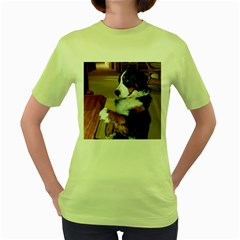 Bernese Mountain Dog Begging Women s Green T-Shirt