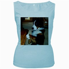 Bernese Mountain Dog Begging Women s Baby Blue Tank Top