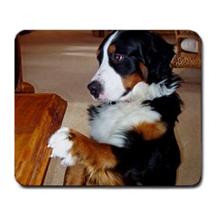Bernese Mountain Dog Begging Large Mousepads