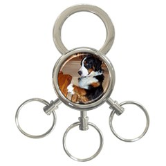 Bernese Mountain Dog Begging 3-Ring Key Chains