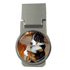 Bernese Mountain Dog Begging Money Clips (Round)