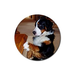 Bernese Mountain Dog Begging Rubber Round Coaster (4 pack)