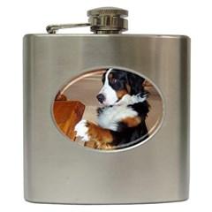 Bernese Mountain Dog Begging Hip Flask (6 oz)