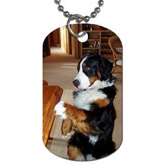 Bernese Mountain Dog Begging Dog Tag (Two Sides)