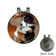 Bernese Mountain Dog Begging Hat Clips with Golf Markers