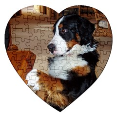 Bernese Mountain Dog Begging Jigsaw Puzzle (Heart)