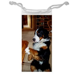 Bernese Mountain Dog Begging Jewelry Bag