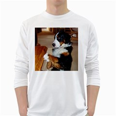 Bernese Mountain Dog Begging White Long Sleeve T-Shirts