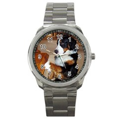 Bernese Mountain Dog Begging Sport Metal Watch