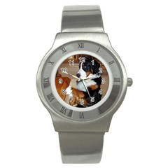 Bernese Mountain Dog Begging Stainless Steel Watch