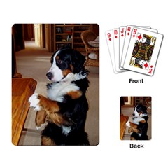 Bernese Mountain Dog Begging Playing Card