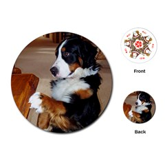 Bernese Mountain Dog Begging Playing Cards (Round)
