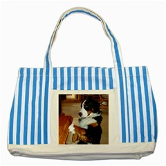Bernese Mountain Dog Begging Striped Blue Tote Bag