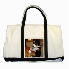 Bernese Mountain Dog Begging Two Tone Tote Bag