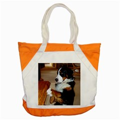 Bernese Mountain Dog Begging Accent Tote Bag