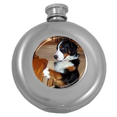 Bernese Mountain Dog Begging Round Hip Flask (5 oz)