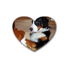 Bernese Mountain Dog Begging Rubber Coaster (Heart)