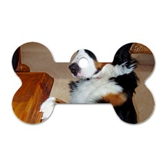 Bernese Mountain Dog Begging Dog Tag Bone (One Side)