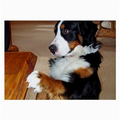 Bernese Mountain Dog Begging Large Glasses Cloth