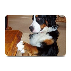 Bernese Mountain Dog Begging Plate Mats