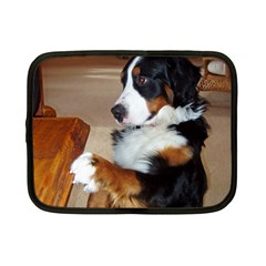 Bernese Mountain Dog Begging Netbook Case (Small)
