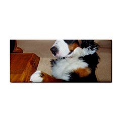 Bernese Mountain Dog Begging Cosmetic Storage Cases