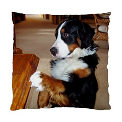 Bernese Mountain Dog Begging Standard Cushion Case (One Side)