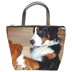 Bernese Mountain Dog Begging Bucket Bags